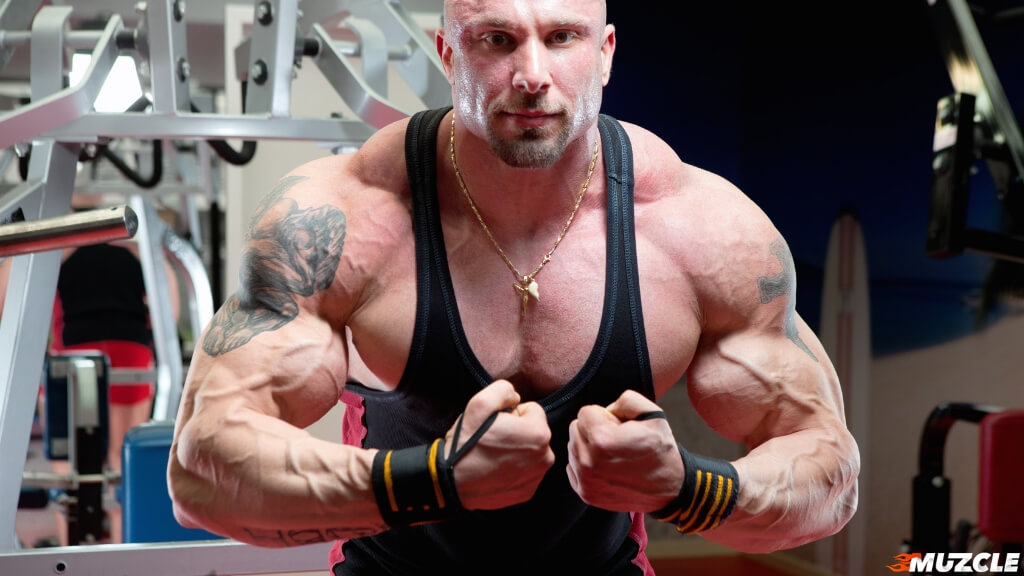 8 Best Steroids for Bulking, Cutting, and Strength Revealed 2019