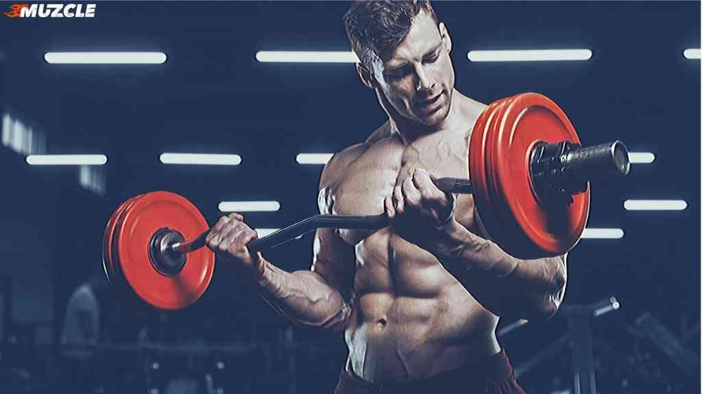 phul workout routine